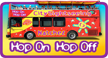 Hop On Hop Off Tours, Click Here